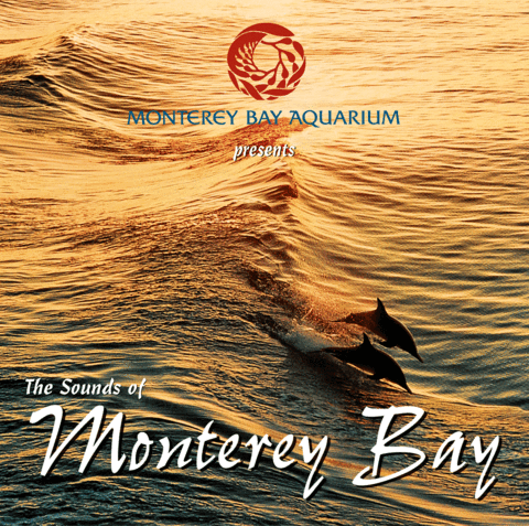 The Sounds of Monterey Bay